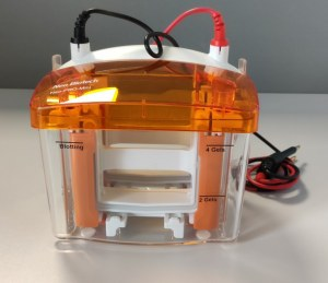 NeoPRO : New mini vertical electrophoresis system